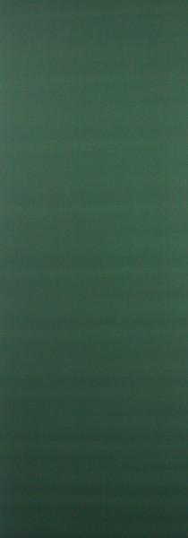 Art: PL05 Flächenvorhang 50x250cm Grün Blickdicht Kürzbar