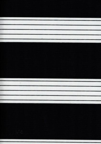Art. 00012-0112 Maßanfertigung Doppel Rollo Zebra Schwarz