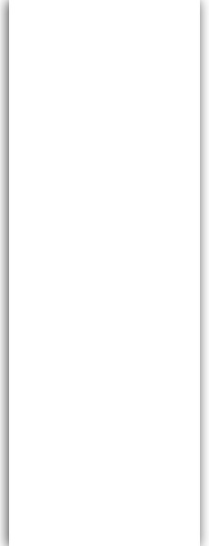 Art: PL17 Flächenvorhang 50x250cm Weiß mit Perlex Beschichtung Kürzbar
