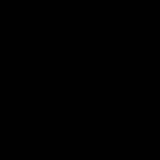 Maßanfertigung Seitenzug Rollo DM2100 blickdichter Stoff Farbe: Schwarz