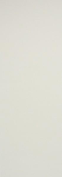 Art: PL24 Flächenvorhang 50x250cm Beige Transparent Kürzbar