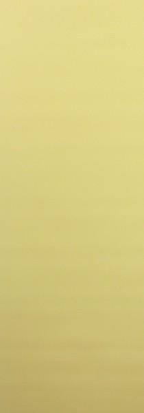 Art: PL03 Flächenvorhang 50x250cm Gelb Blickdicht Kürzbar